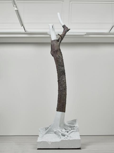 , 'Indistinti confini - Macra,' 2012, Marian Goodman Gallery