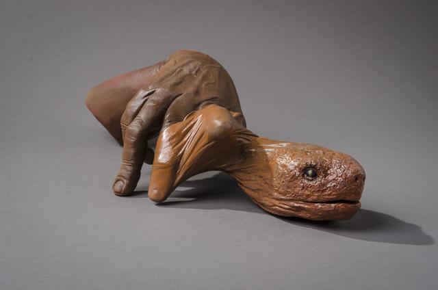 , 'Tortuga,' 2007, Hieronymus
