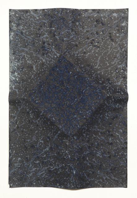 , 'Ecotone #67 (Bainbridge Island, WA 05.25-28.16, Draped with Sun Showers),' 2016, Yossi Milo Gallery