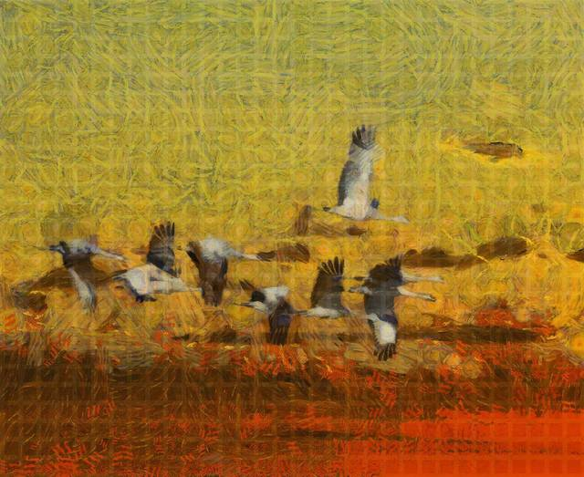 , 'Crane Sunset,' 2015, Agora Gallery