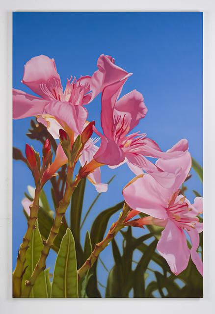 , 'Oleander 4,' 2016, Dirimart