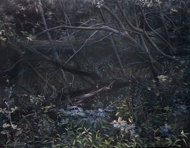 , 'Dark Forect, Northcote,' 2013, Hill Smith Gallery