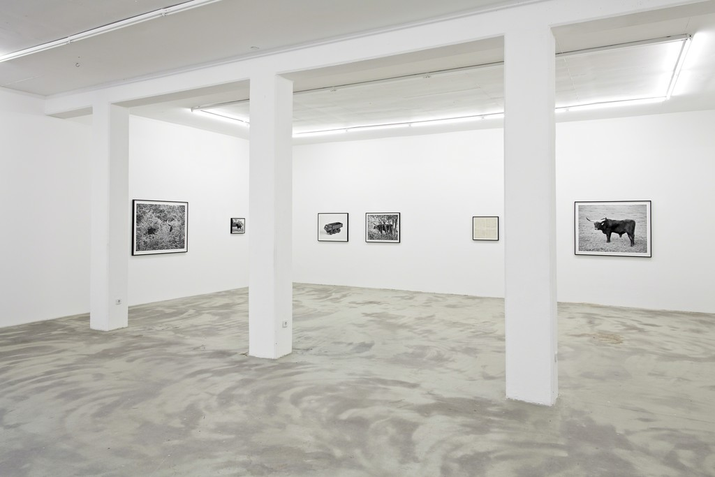 UR, 2015, exhibition view at KLEMM'S Berlin
