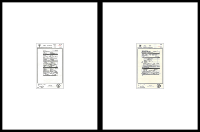 , 'Episode 3  A948840 – Marriage Licence, P130842 – Medical  Certificate of Death-Form16  (diptych),' 2004, Robert Kananaj Gallery