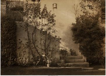 Untitled (Garden steps)