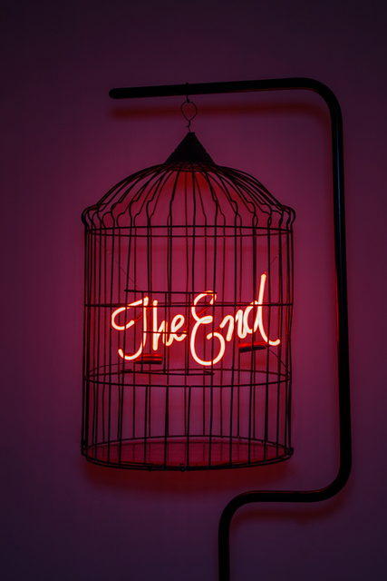 , 'The End Cage,' 2018, MAIA Contemporary