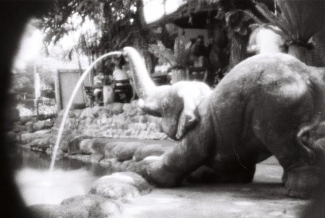 , 'Undeniably an elephant,' , Anna Laudel