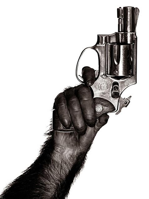 Albert Watson, 'Monkey With Gun', 1992, CHRISTOPHE GUYE GALERIE