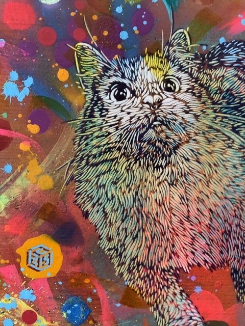 C215, 'Pop cat', 2020, Painting, Spray paint and acrylic on wood, Galry