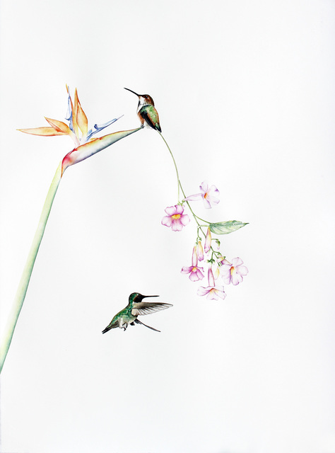 , 'Bird Of Paradise 6,' 2015, Kopeikin Gallery