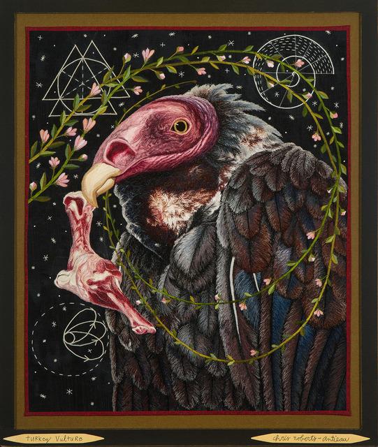 , 'Turkey Vulture,' 2018, Antieau Gallery