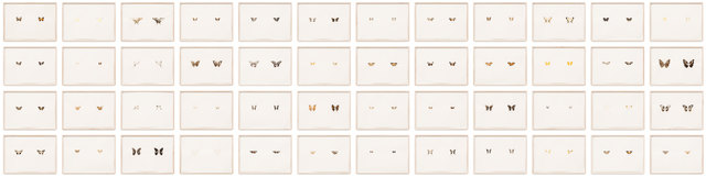 , 'Butterfly Prints,' 2014, Galerie Kandlhofer