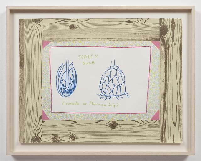 , 'Untitled (Woodgrain, Scaley Bulb),' 1974, Alexander and Bonin
