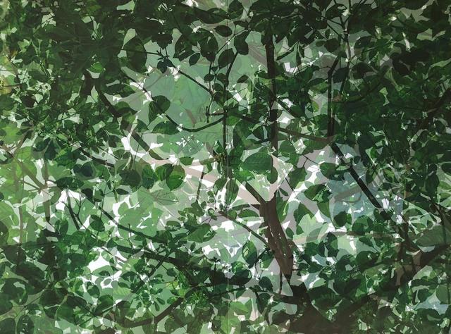 Cheng-Yen LIN, '映像‧印象-14 Reflection・Impression-14', 2018, Der-Horng Art Gallery