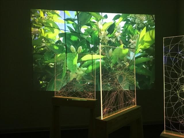 , 'Chronicles of Flowers II,' 2017, Zilberman Gallery