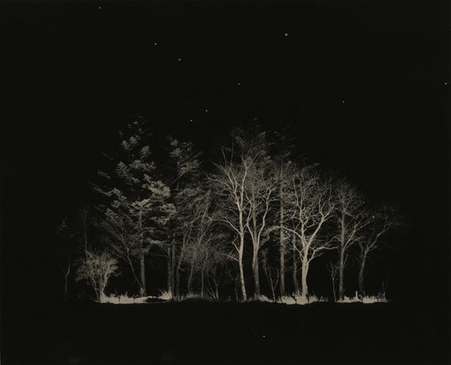 , 'Untitled #1632,' 2014, Yancey Richardson Gallery