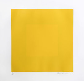 Spring Suite (Yellow with Yellow)