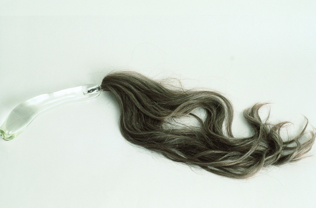 , 'Hair Whip,' 1993, Galerie Laroche/Joncas