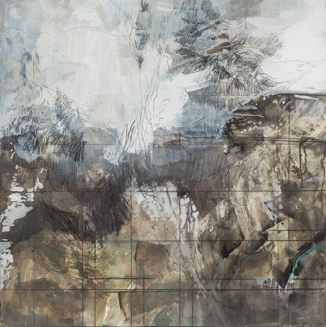 , 'Terrain, possible and remembered,' 2016, Koplin Del Rio
