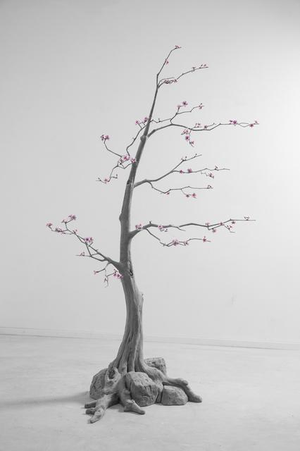 , 'Blossom Tree (4),' 2018, GALLERIA CONTINUA
