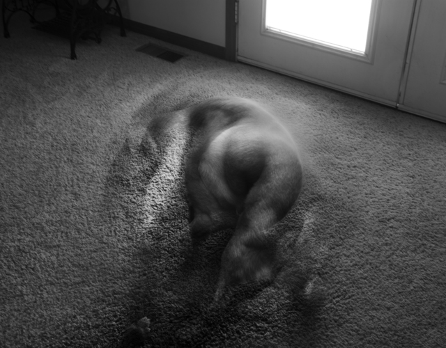 Daniel Coburn, 'Apparition', 2014, Elizabeth Houston Gallery