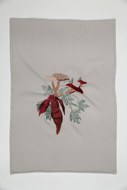 , 'A quimera das plantas [Os cogumelos e a batata doce],' 2016, Galeria Nara Roesler