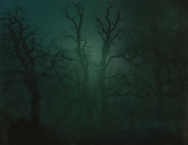 Nicholas Hughes, 'In Darkness Visible no. 14 [Verse I]', 2007, Dellasposa