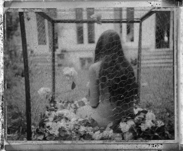 , 'La Gabbia,' 2013, Alberta Pane