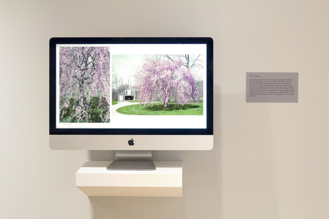 , 'Recent Work,' 2014, Pace/MacGill Gallery