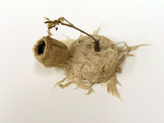 Rachel Muldez, 'Aloft', 2016, Sculpture, Mulberry bark, cocoon, chia seeds, Ro2 Art