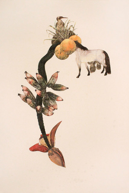 , 'Banana Massacre,' 2013, Gallery Espace