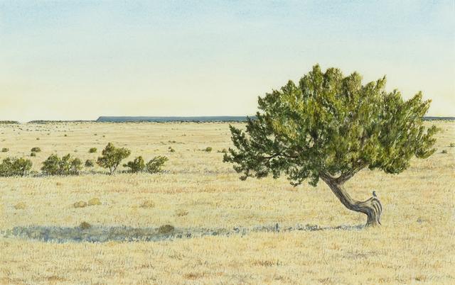 , 'Juniper and Beyond,' 2017, Gerald Peters Gallery Santa Fe