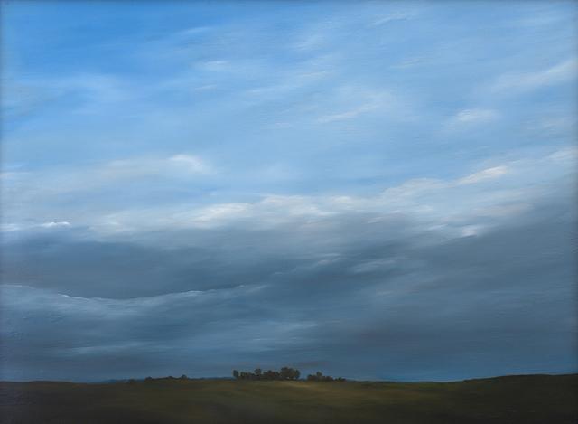 , 'Windswept, Tree Break,' 2016, Duane Reed Gallery