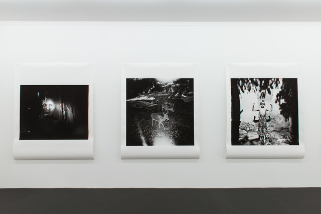 ", 'Installation View ""Love has to be reinvented"",' 2014, Kehrer Galerie"