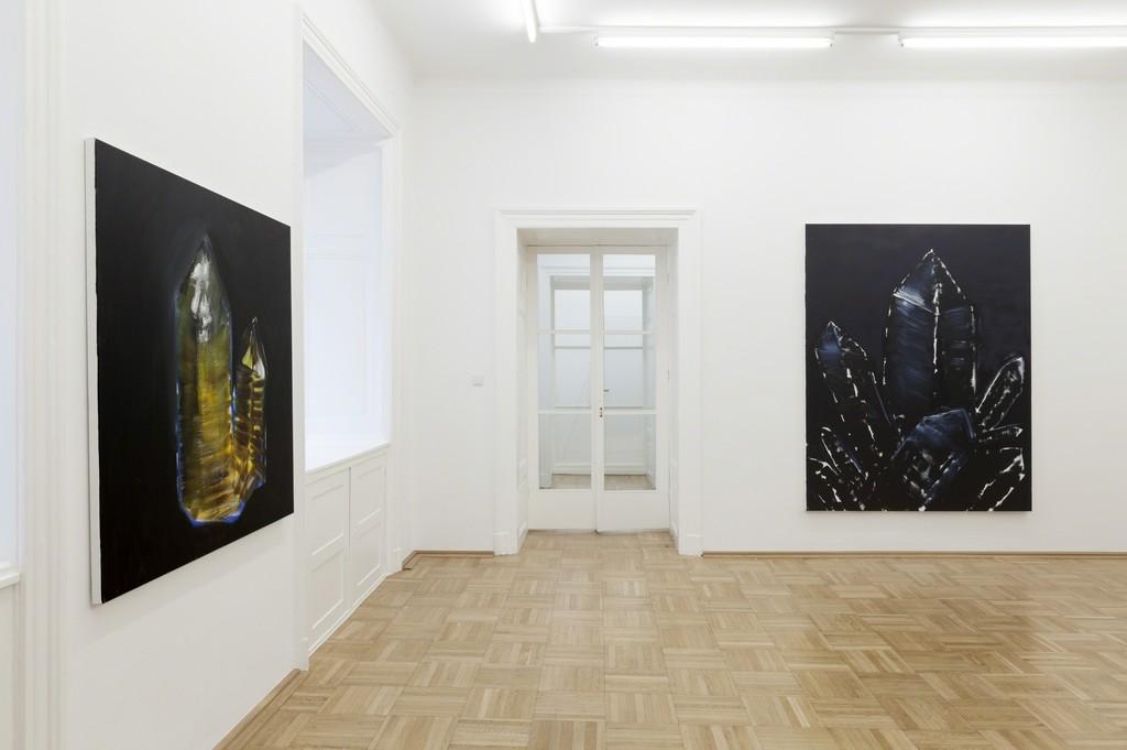 Courtesy Galerie nächst St. Stephan  Photo Markus Wörgötter ROOM 2