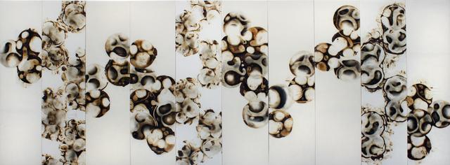 , 'Old Bones Old Genes a Population Groups Case,' 2010, SMAC ART GALLERY