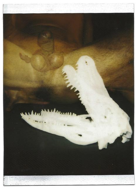 , 'Autorretrato 83,' 1995, Galería Quetzalli