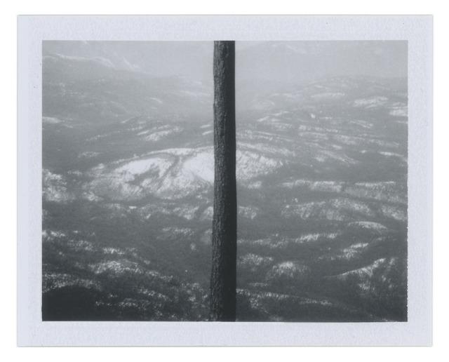 , 'Divided View,' 2013, Wirtz Art