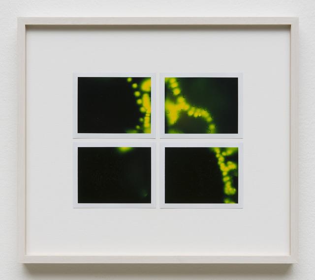 , 'Photuris #27,' 2013, Galerie Crone
