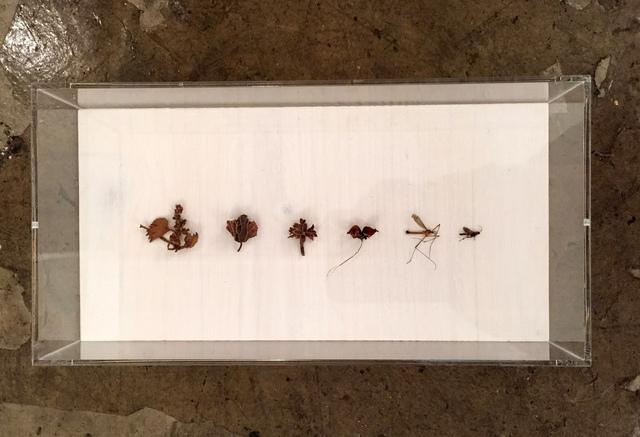 , 'Neuordnung II,' 2015, Galerie SOON