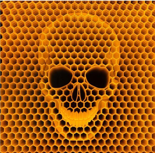 , 'Bees Die We Die,' 2014, Oliver Cole Gallery