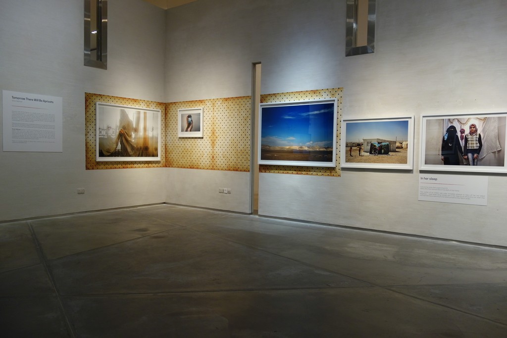 """If I Leave, Where Will I Go"" installation view of Tanya Habjouqa's series ""Tomorrow There Will Be Apricots"""