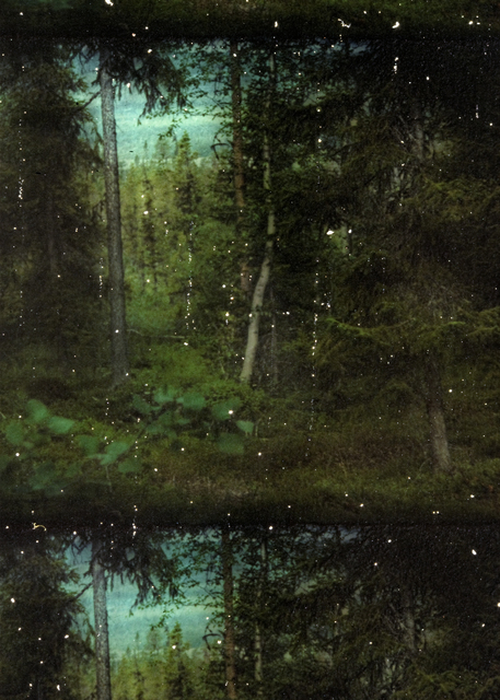 , 'Victims of Finnish Forest Murders,' 2016, Galerie Anhava