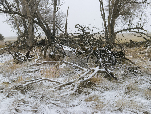 , 'Buckboard Wagon, Sheridan County, Nebraska,' 2013, Yancey Richardson Gallery