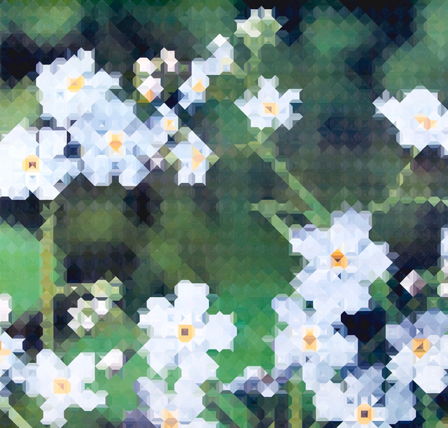 , 'Forget Me Not,' 2010, Galerie Richard