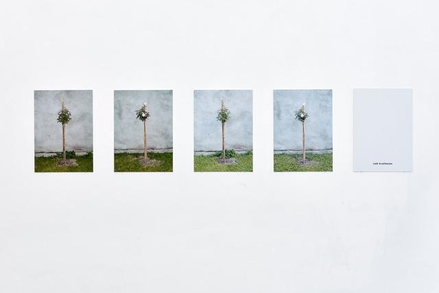 , 'Affectionately,' 2011, VILTIN Gallery