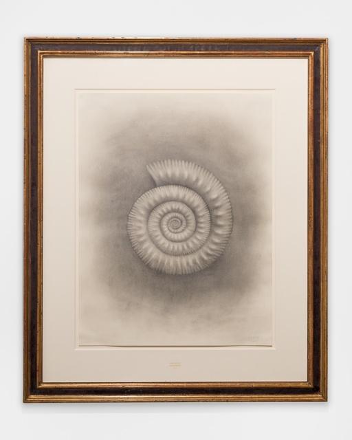 Mark Ryden, 'Ammonite', 2015, Kasmin