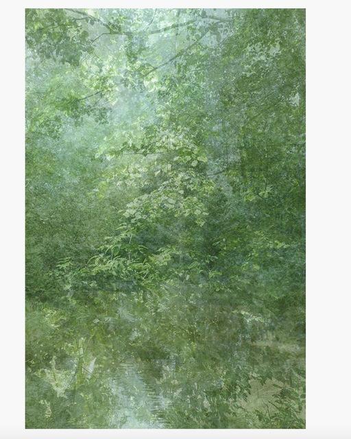 Kim Boske, 'I go walking in your landscape 2', 2012, Flatland Gallery