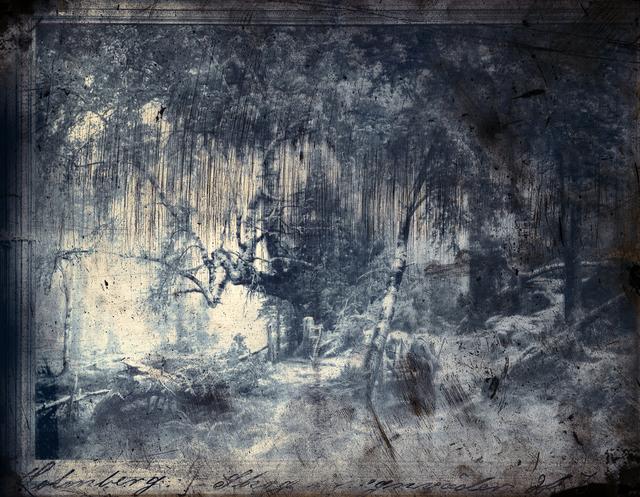 , 'Forest in Rain ,' 2016, Galerie Anhava