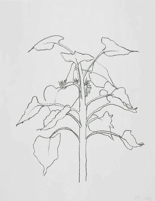 , 'Sunflower I,' 2004, Galerie Maximillian